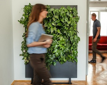 Green walls and ergonomic of work