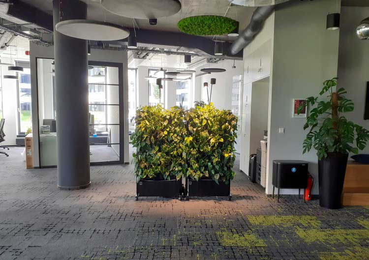 Mobile green walls - the advantages of mobile office furniture