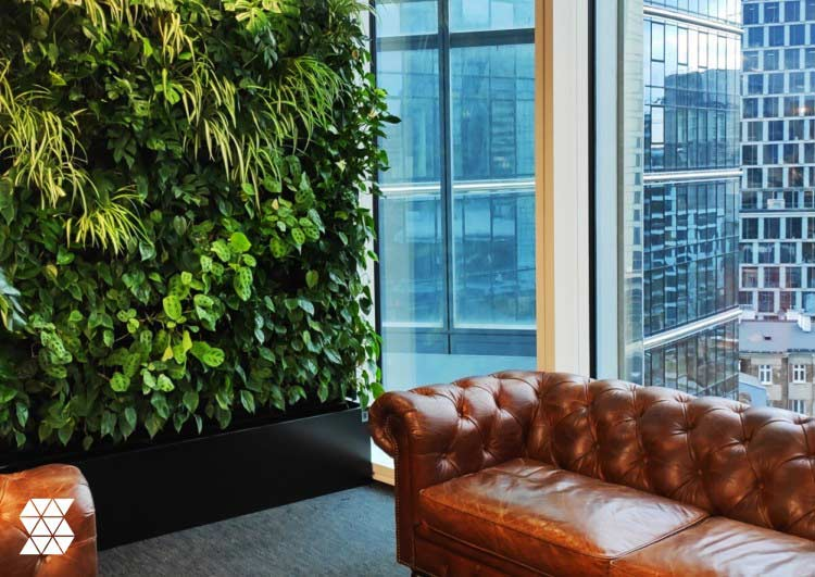 The latest trends in Biophilia